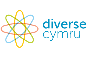 Read more about the article Diverse Cymru Tool Kit